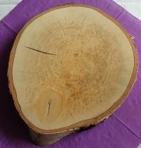 Deko Untersetzer 21-23 cm Holzscheibe Vintage Hochzeiten Tischdeko